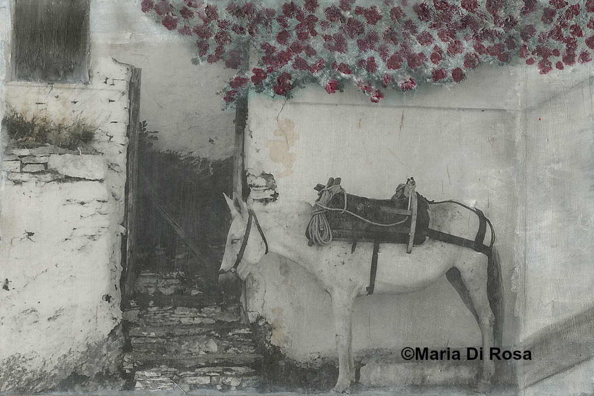 ©Maria-Di-Rosa-encaustic-mixed-media-166-Walkway-III-Greece