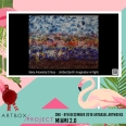 Di Rosa-Maria Antonietta-Canada-Maria Antonietta Di Rosa-Untitled (Earth's Imagination in Flight)-558Instagram